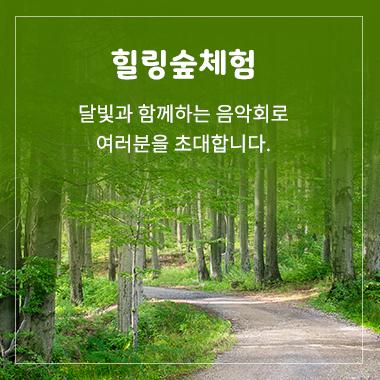 힐링숲체험